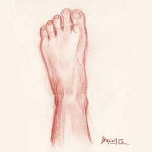 Croquis Anatomique : le Pied !